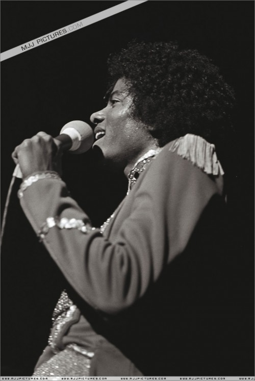 1979-DestinyTour9.jpg